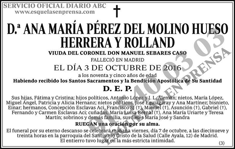 Ana María Pérez del Molino Hueso Herrera y Rolland